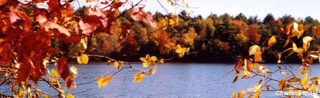 Fall in Black River Country