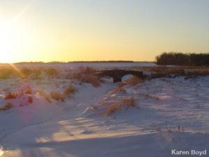 Snowshoe in Dodge County