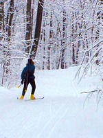 Skiing the northwoods!