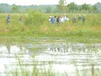 Birding in Rusk County by Jeff Miller