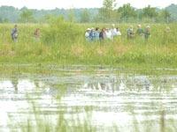 Birding in Rusk County by Jeff Miller