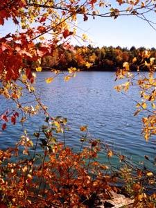 Black River Fall Colors