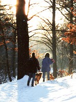 Snowy hike in the woods