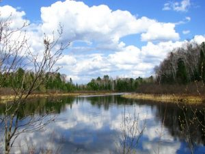 Spring on Manitowish River