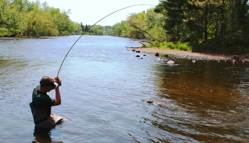 Wisconsin river water temperature for Trout fishing wisconsin