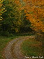 Sisters Farm Trails