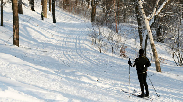 Skiing in Stevens Point Area