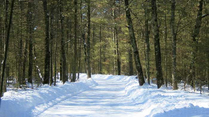 brf-winter-trail