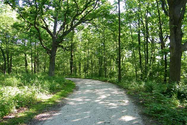 Wiouwash Trail