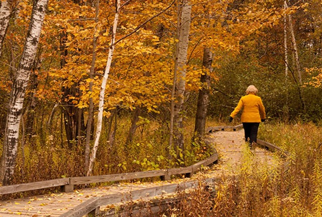 Five Fall Color Hikes Wisconsin Travel Best Bets
