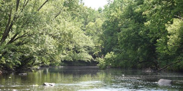 Scenic River in Rusk County