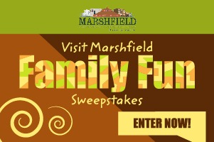 Family Fun Sweepstakes