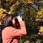Explore Wisconsin's public lands