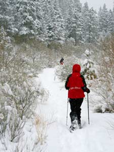 Try snowshoeing on your next Wisconsin Vacation.
