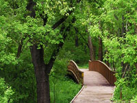 Hiking Trail in Middleton