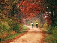 Bike trail